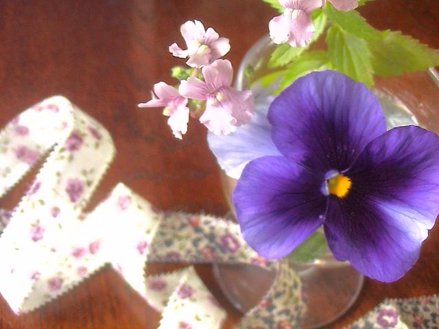 (仮)春のうた。_e0060555_204329.jpg