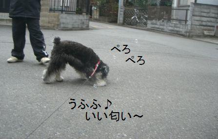 f0197317_17442024.jpg