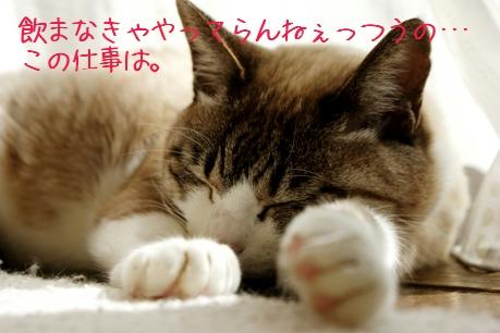 f0190851_18122793.jpg