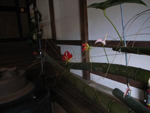 瑞龍寺で展示しました!_b0151262_2216559.jpg