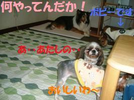 d0140668_1502325.jpg