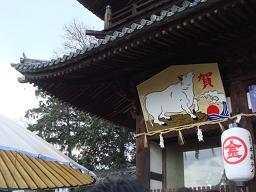 日本大好き日記❤No.5_a0102784_17351631.jpg