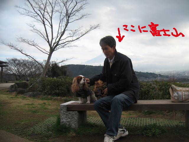 d0132001_128245.jpg