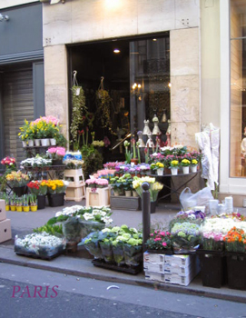 ◆2008 PARIS◆_b0111306_2294621.jpg