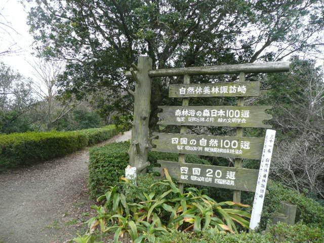 諏訪崎を歩きました♪_f0099147_895746.jpg