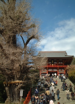 鎌倉_f0110089_12591596.jpg