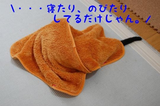 c0181639_0253666.jpg