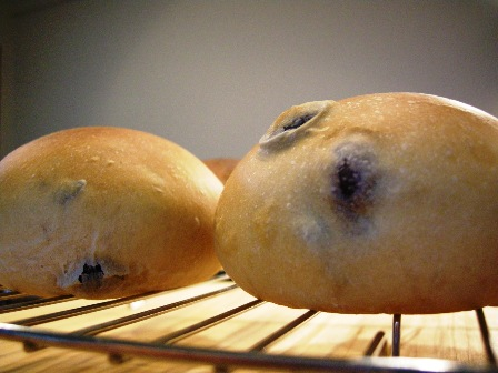 黒豆と黒糖のパン_e0167593_0355223.jpg