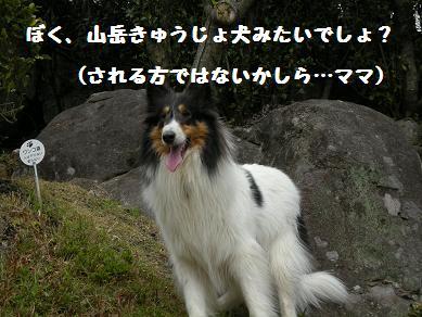 f0081100_22352150.jpg