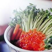 ♪新鮮 発芽野菜通信「奇跡の声」♪_d0063218_11564571.jpg