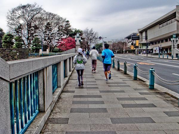 竹橋〜東御苑〜霞ヶ関_f0077521_20221149.jpg