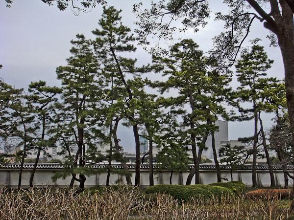竹橋〜東御苑〜霞ヶ関_f0077521_20485338.jpg