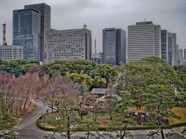 竹橋〜東御苑〜霞ヶ関_f0077521_21133590.jpg