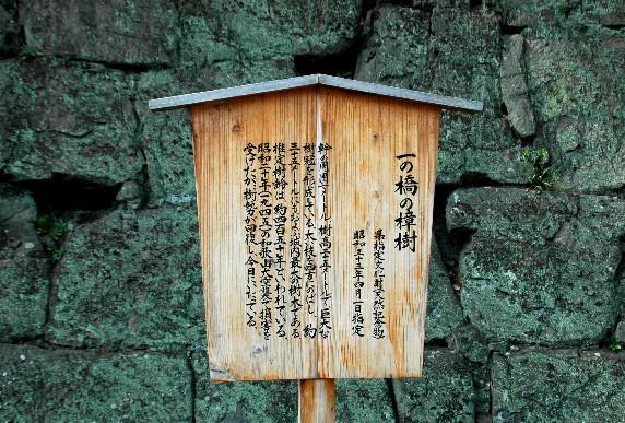 和歌山城散策  _b0093754_0254080.jpg