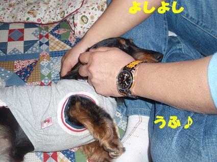 c0151866_10315972.jpg