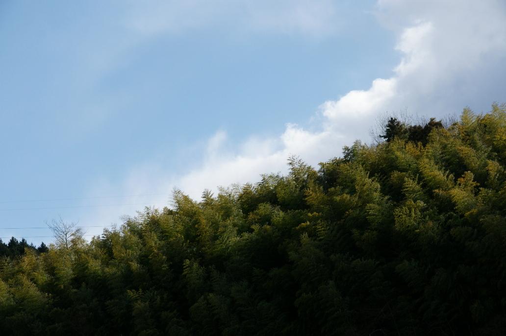風景 --近江 寸景--_b0155395_034148.jpg