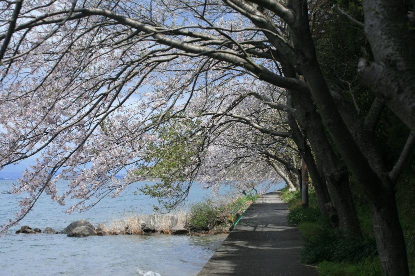 風景 --近江 寸景--_b0155395_113337.jpg