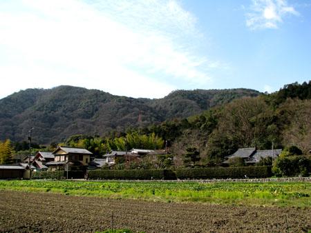 嵯峨野 落柿舎あたり1_e0048413_2214973.jpg