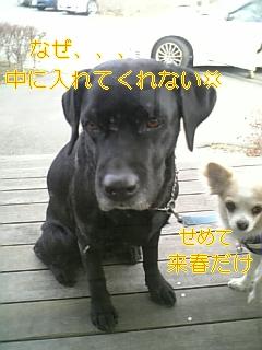 f0148927_10412786.jpg