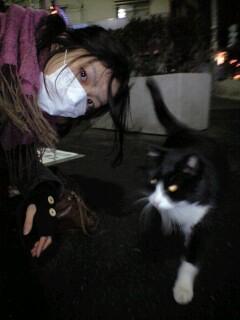 外猫はん_b0072729_2252454.jpg