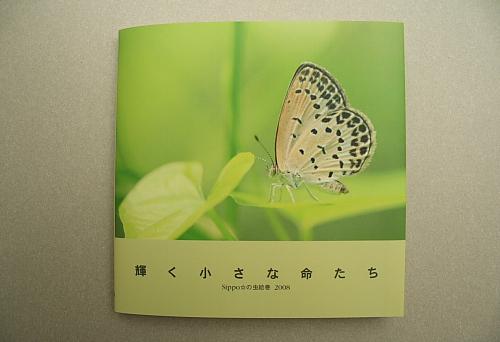 ■■Sippo☆の虫絵巻 ~vol.3~■■_c0195662_16563150.jpg