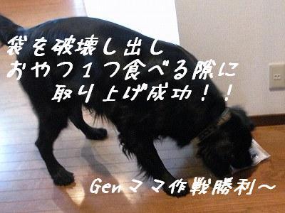 f0176499_1824588.jpg