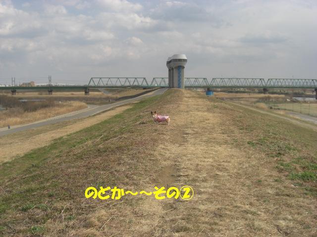 f0182121_1052766.jpg