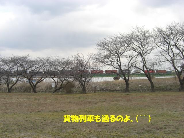 f0182121_1083044.jpg