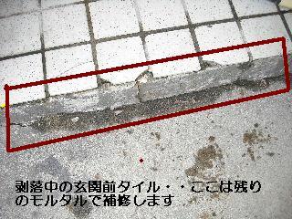 f0031037_205932.jpg