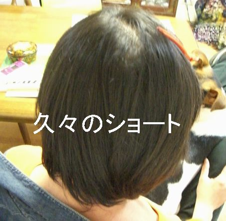 f0053952_2020594.jpg