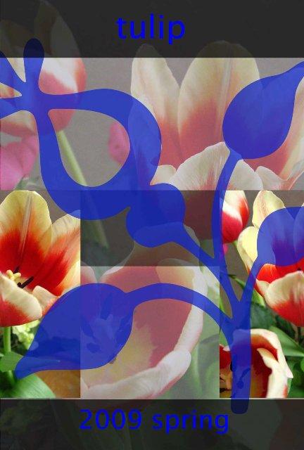 f0120483_22411483.jpg