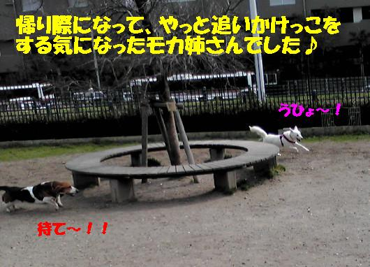 f0121712_20533468.jpg