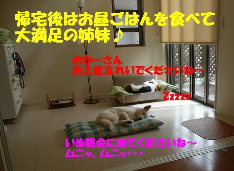 f0121712_2185787.jpg