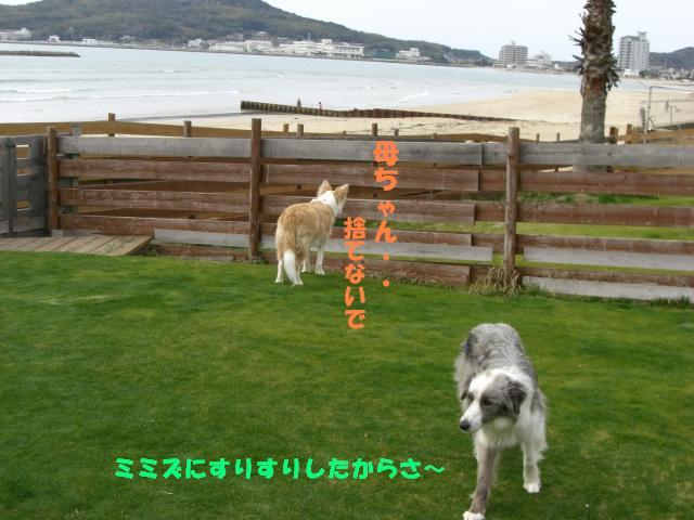 b0137913_093850.jpg