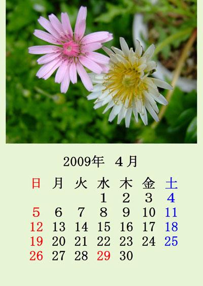 f0147025_1535387.jpg
