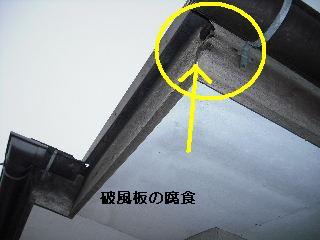 f0031037_2013811.jpg