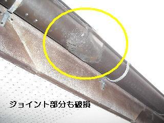 f0031037_202018.jpg