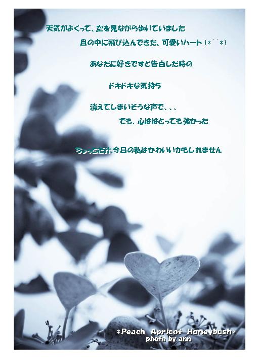 b0126044_029264.jpg
