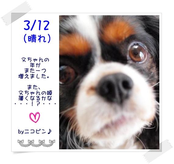 c0145250_2014956.jpg