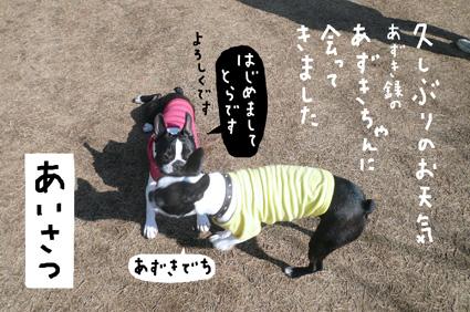 f0170072_016564.jpg