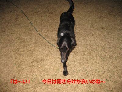 b0148945_048363.jpg
