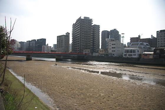 福岡出張記憶3_f0033205_7263821.jpg