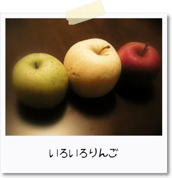 いろいろりんご。_b0157216_21445853.jpg