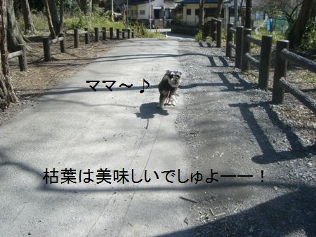 f0197317_20171272.jpg