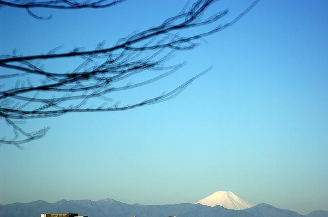 富士山_d0113340_2384338.jpg