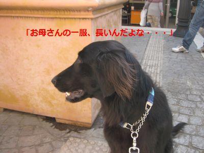 b0148945_17322118.jpg