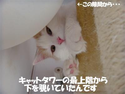 c0195250_1910869.jpg
