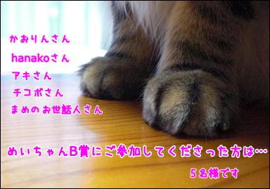 d0139352_1435247.jpg