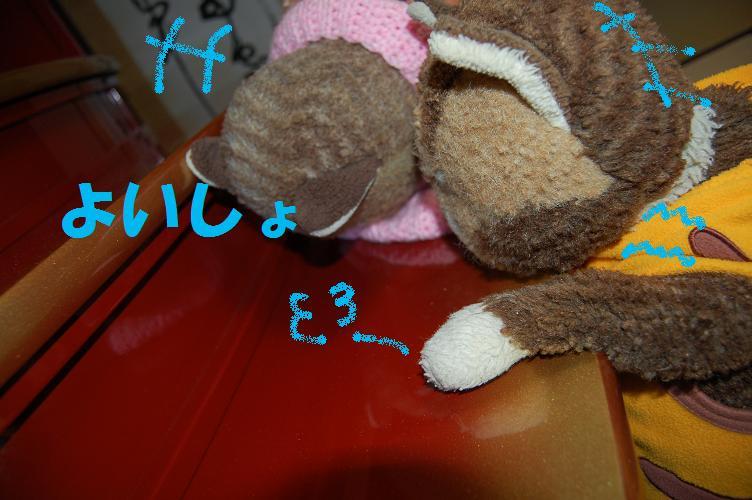 b0059978_21335765.jpg