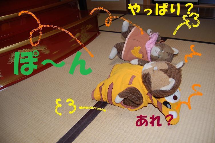 b0059978_2137244.jpg